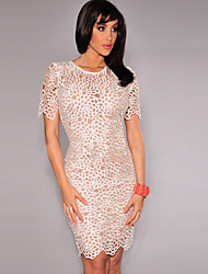 Women's Embroidered Lace Nude Illusion Bodycon Dress