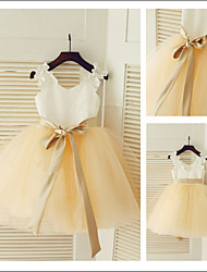 Beautiful Ball gown Princess Jewel Flower Girl Dress