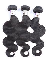 "3Pcs/Lot+8""-30""+Brazilian (Italian)Human Virgin Hair+ color(natural color)+Body wave"