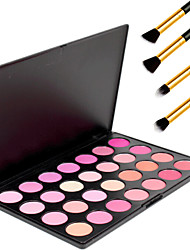 28 Colors Professional Beauty Makeup Cosmetic Blush Blusher Powder Palette+4PCS Pencil Makeup Brush