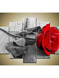 ручная роспись современной абстрактной красивой стены искусства серый красная роза картины маслом на холсте 5pcs / не устанавливал кадр