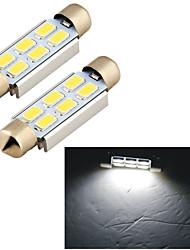 Spia del cruscotto/Luce dell'abitacolo/Luce della targa/Lampada frontale - Auto - LED - Faretto - 6000K