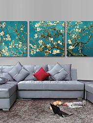 conjunto de três impressão em canvas arte van Gogh amêndoa