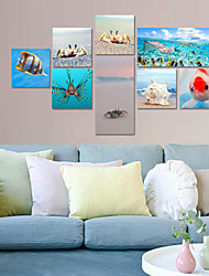 VISUAL STAR® 8 pieces Modern Art Underwater Ocean Sea World Crab Giclee Canvas Art Beach Seascape Ready to Hang