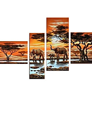 VISUAL STAR®Africa Elephant Animal Oil Painting Hand-Painted Canvas Wall Art Handmade Oil Painting Ready to Hang
