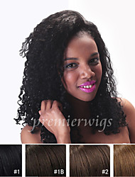 8''-24'' Kinky Curly Remy Virgin Indian Human Hair Wigs Silk Top Full Lace Wigs With Baby Hair For Black Women