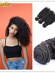 3 Pcs/Lot Afro amercian woman virgin human brazilian hair afro curl unprocessed hair extensions weft free shipping