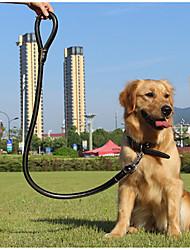 Large Dog Collars Leash