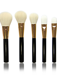 5 Makeup Brushes Set Goat Hair Others