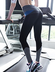 Quick Dry - Women's - Yoga / Fitness - Tights