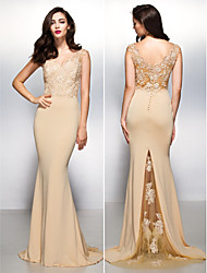 Formal Evening Dress - Champagne Trumpet/Mermaid V-neck Sweep/Brush Train Lace / Jersey