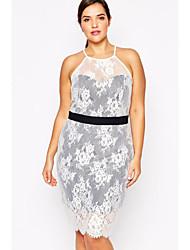 Women's Paper Dolls Plus Lace Overlay Halterneck Pencil Dress