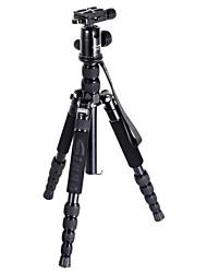 Sinno M2522Z Aluminum Professional Tripod for Digital Camera