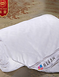 New Winter 100% Cotton Quilt Silk Blanket Home Textile Silk Quilts White Pure Comforter Bedding Sets