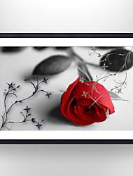VISUAL STAR®Picture Frame Rose Flower Paper Print Art Covered with Glass Ready to Hang