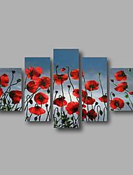 готовы повесить растянутая оформлена ручная роспись маслом холст стены искусства Красные маки голубое небо современные пять панелей