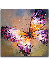 Free Shiping Colorful Butterfly Animal Designs Framed Handmade Oil Painting