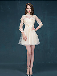 Cocktail Party Dress - Champagne A-line Jewel Short/Mini Tulle