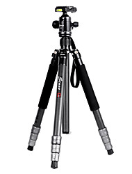 Sinno C8 Carbon Fiber Tripod For SLR Camera Portable Compact Tripods Monopod
