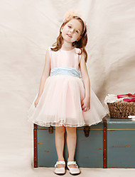 Girl Pink Tulle Party Dresses