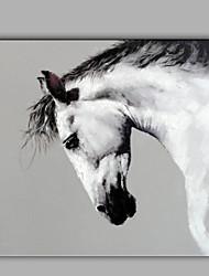 única mão puro abstrato moderno desenhar pronto para pendurar decorativo da pintura a óleo do cavalo