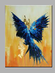 única mão puro abstrato moderno desenhar pronto para pendurar decorativo da pintura a óleo do papagaio