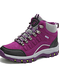 Women's Hiking Shoes Blue / Purple / Red