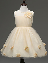 Girl's Gold Dress , Lace Polyester Spring / Fall