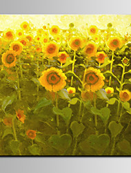 Landscape Sunflower Painting IARTS Brands Ready To Hang on Living Room