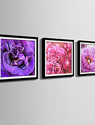E-HOME® Framed Canvas Art,Showy Flowers Framed Canvas Print Set Of 3
