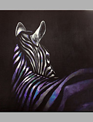 Single Modern Abstract Pure Hand Draw Ready To Hang Decorative The ZebraOil Painting