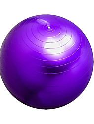 65cm Bola para Yoga PVC Rosa / Roxo 65*65*65 Feminino SP