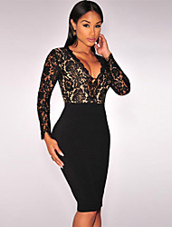 Women's  Lace Nude Illusion Long Sleeves Dress