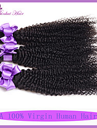 Kinky Curly Virgin Hair Malaysian Curly Virgin Hair 3 PCS Malaysian Kinky Curly Hair 7A Unprocessed Virgin Hair Bundles