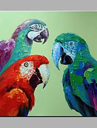 Peint à la main AnimalModerne Un Panneau Toile Peinture à l'huile Hang-peint For Décoration d'intérieur