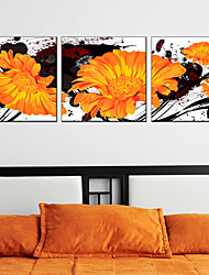 Stretched Canvas Oil Painting Flower Home Decorative Pictures 60*60CM*3PCS