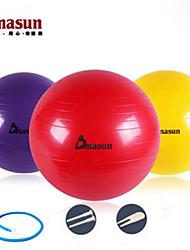 65cm Fitness Ball PVC Yellow / Red / Gray / Blue / Purple Unisex Dmasun