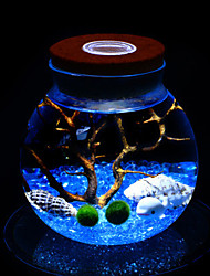Micro Algae Ball Ecological Bottle Night-Light Landscape Plants Creative A Birthday Present Lamp Led