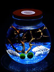 micro řas míč ekologická bottle noční osvětlení krajiny rostliny kreativní dárek k narozeninám žárovku vedené