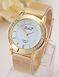 Women's Watch Golden Net With Diamond Watch Cool Watches Unique Watches