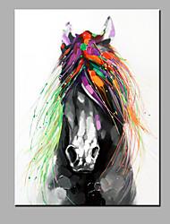 pintura a óleo moderna mão puro abstrato desenhar pronto para pendurar decorativo da pintura a óleo do cavalo