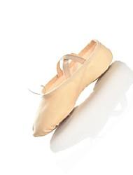 Dance Shoes Ballet Shoes Dance Slipper