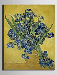 Handgeschilderde Beroemd / Bloemenmotief/BotanischEuropese Stijl Eén paneel Canvas Hang-geschilderd olieverfschilderij For Huisdecoratie