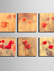 E-HOME® Stretched Canvas Art Red Flowers Series Decoration Painting MINI SIZE One Pcs