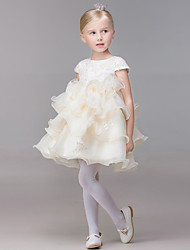 A-line Short / Mini Flower Girl Dress - Organza Short Sleeve Jewel with