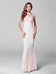 Formal Evening Dress Trumpet/Mermaid High Neck Floor-length Lace / Tulle