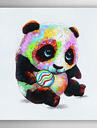 pintados à mão panda óleo animal pintura joga com a bola, com quadro esticado