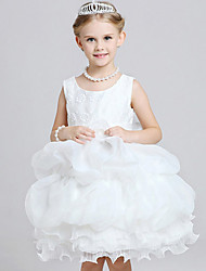 Girl's Polyester Summer Bubble Princess Dress