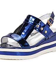 Women's Shoes Wedge Heel Wedges Sandals Office & Career / Dress / Casual Blue / Pink / Silver
