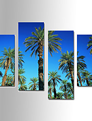Botanical Coconut Tree Canvas Print Four Panels Ready to Hang,Any Shape(No Frame)